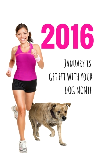 January IS GET FIT WITH YOUR DOG MONTH